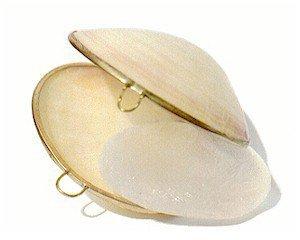 Кристалл-дезодорант алунит в розовой раковине Деонат, 75 г. - Натуральные дезодоранты
