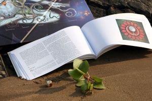 Дополнительный экземпляр книги для игры лила leela  Игра Лила