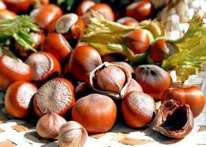 Фундук очищенный сырой  Всем на пользу,  250 г.Орехи, сушеные овощи и фрукты<br>Фундук - прекрасный источник энергии для организма; можно с успехом заменять им многие продукты животного происхождения – например, жирное мясо.<br>
